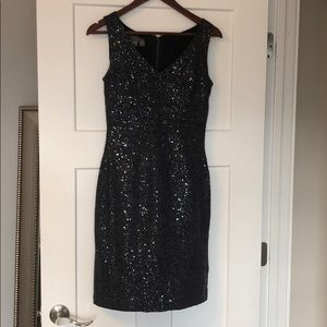 Fitted Women's Winter Sparkle Dress